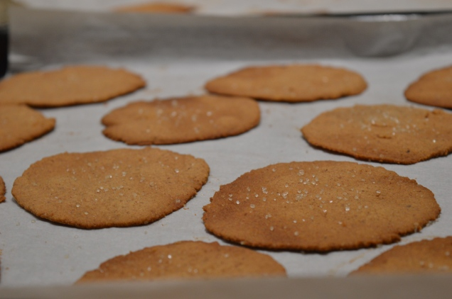 Vegan Gluten-Free Super Healthy Ginger Cookies.JPG